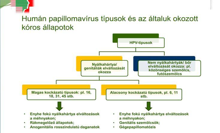 onkológiai szemölcsök endokrin rák megelőzése