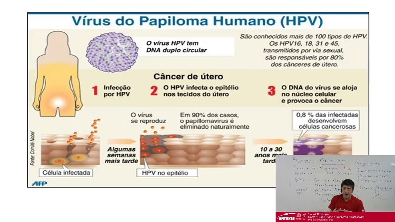 biológia 1 vírus