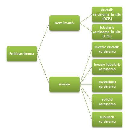 intraductalis papilloma betegség tünetei)