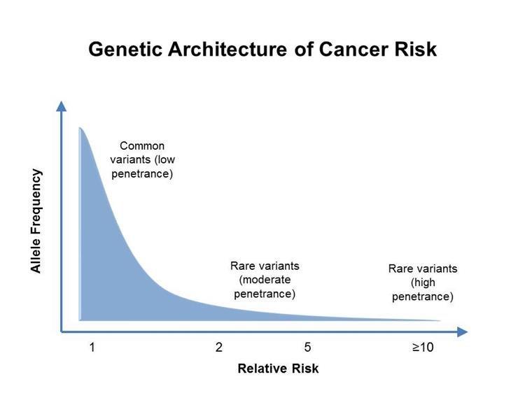 Rák és BRCA génmutáció: kinél indokolt genetikai vizsgálat? | Rákgyógyítás