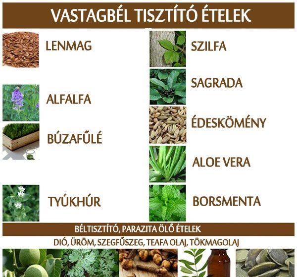 növényi vastagbél méregtelenítő receptek)