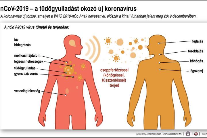 a helminthiasis kezelés tünetei)