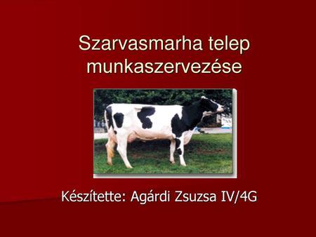 szarvasmarha-papillomatosis fogalma