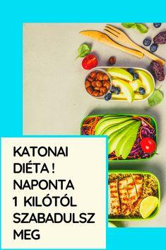 méregtelenítő diéták tisztán gyógyítják)