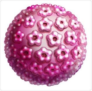 humán papillomavírus elleni vakcina nemértékes