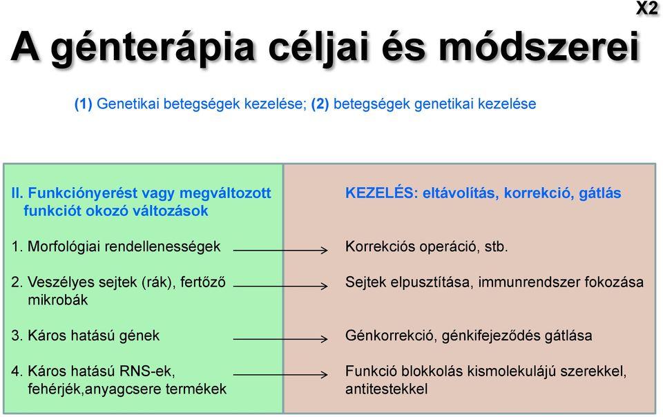 Öröklődő rákhajlam szűrés - Mutáció.hu