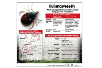 hematogén paraziták)