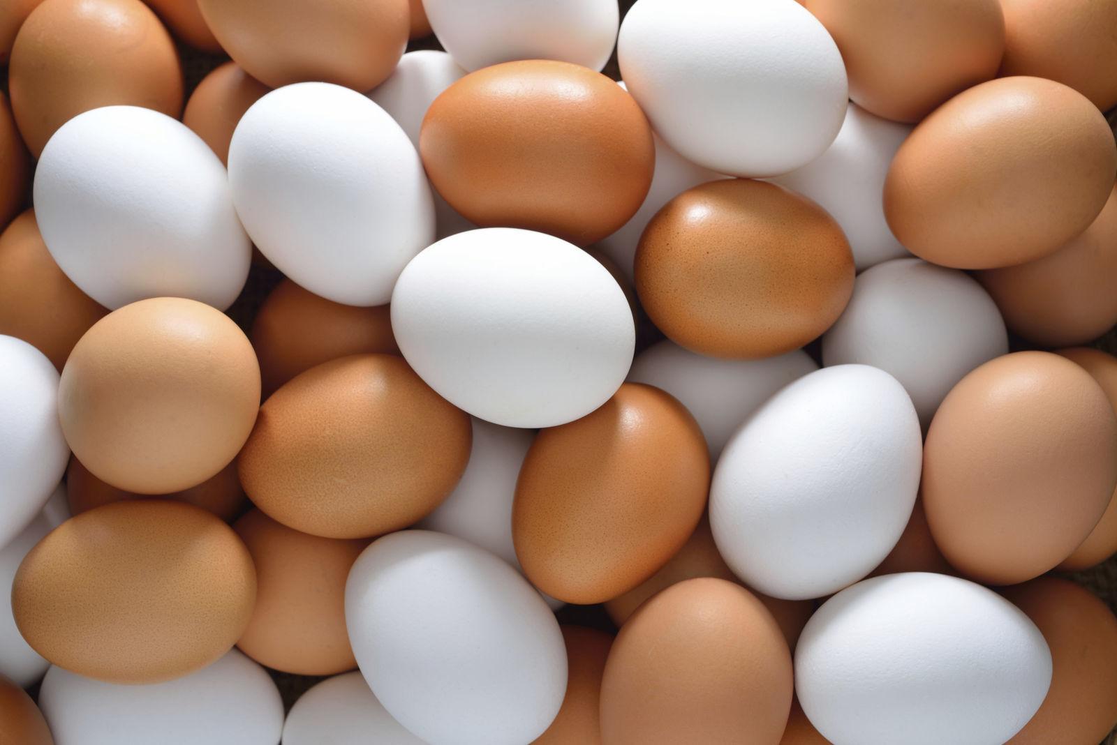Mikor vezessük be a tojást a baba étrendjébe?