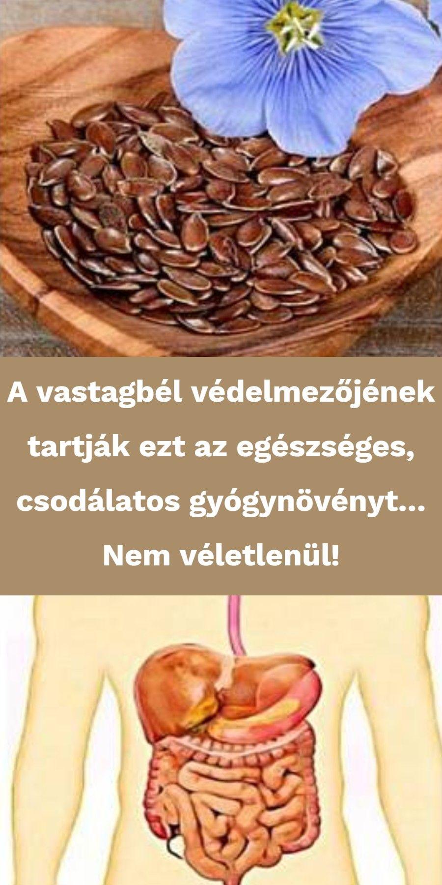 milyen ételek tisztítják a vastagbelet)