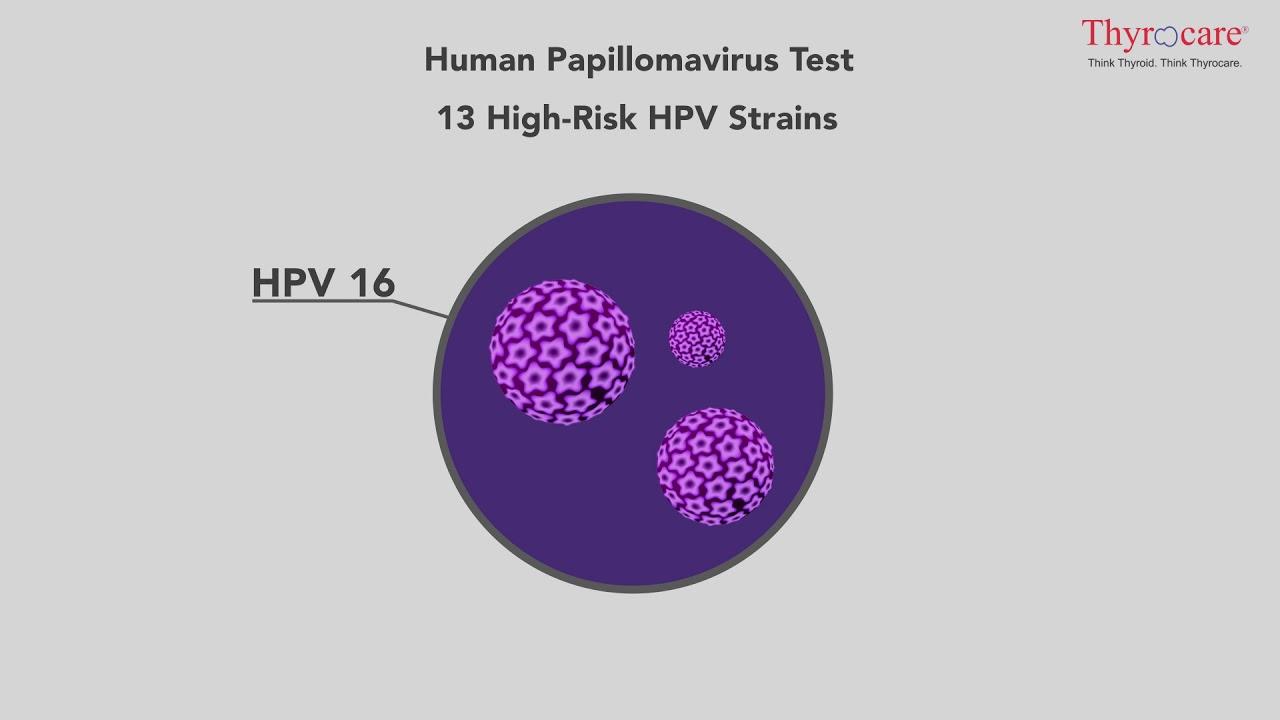 A citológia és a HPV-tipizálás szerepe a méhnyakrák-szűrésben