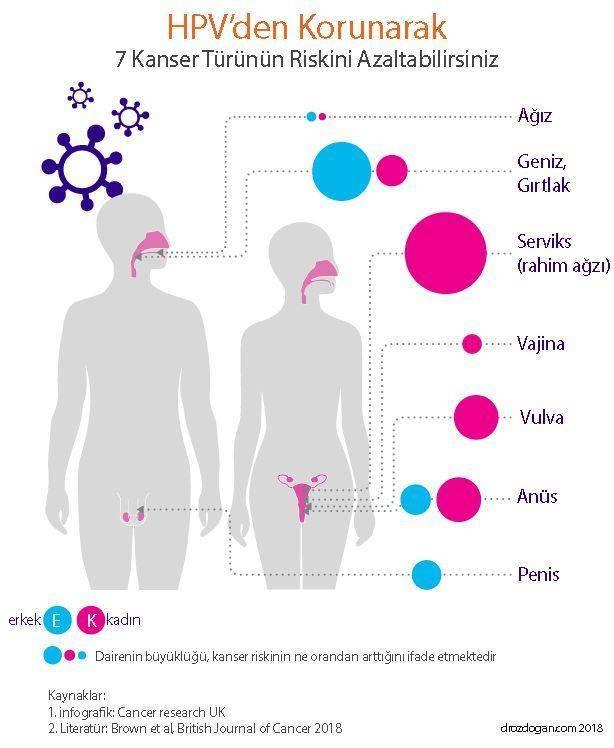 Hpv szemolcs terhesseg, Giardia simptome tratament