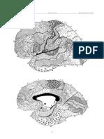 pikkelyes papilloma dysphagia