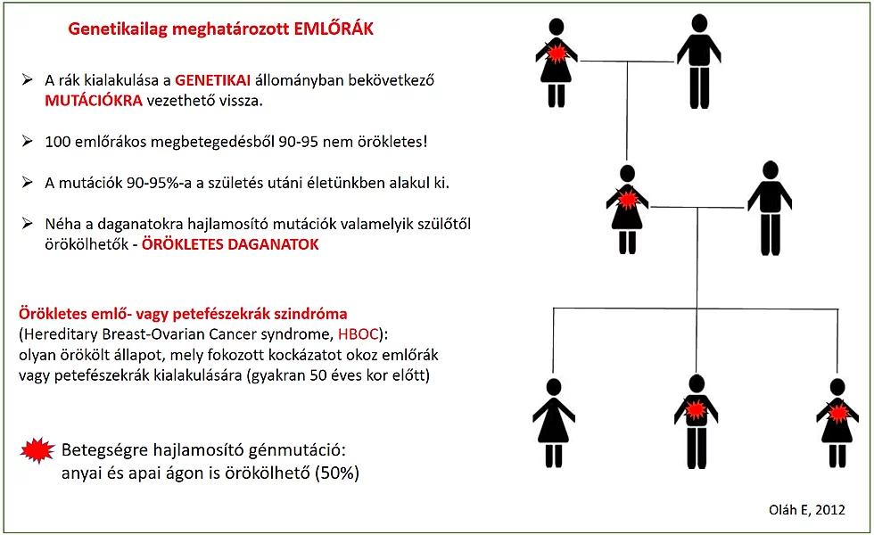 A rák genetikai eredetű, de ritkán öröklött betegség
