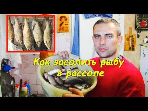 izopoda paraziták)