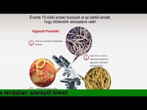 A helmintusok patogenezise