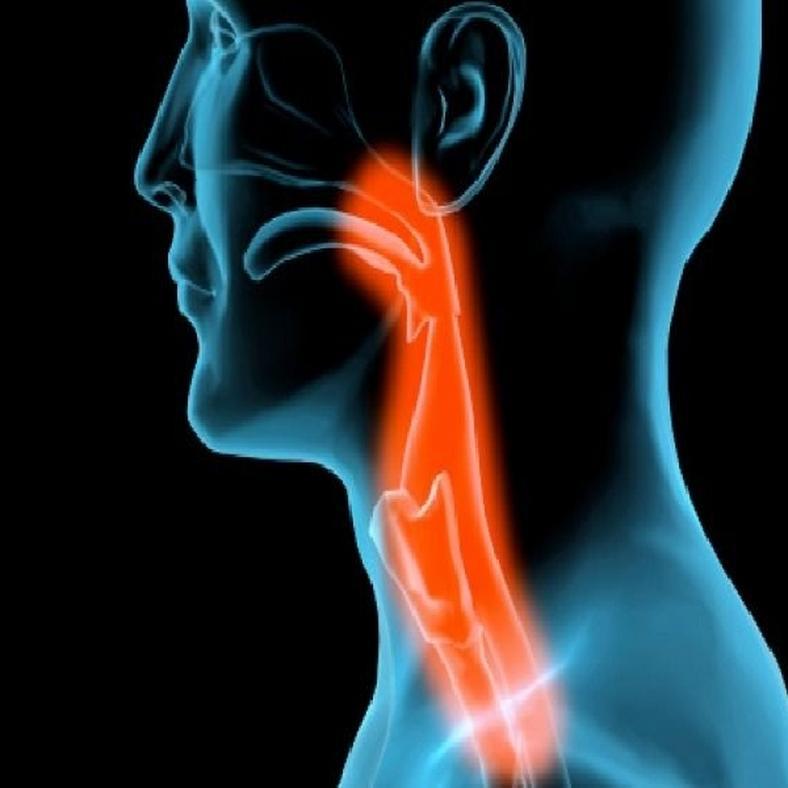 Nyelőcsőgyulladás tünetei és kezelése