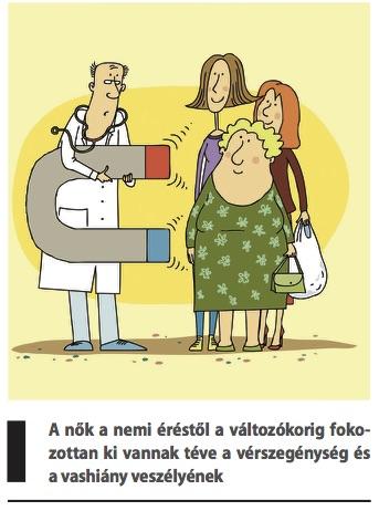 vérszegénység elemzése)