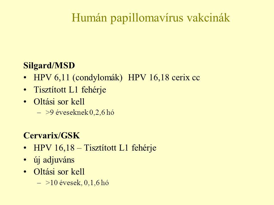 humán papilloma vírus vírusellenes)