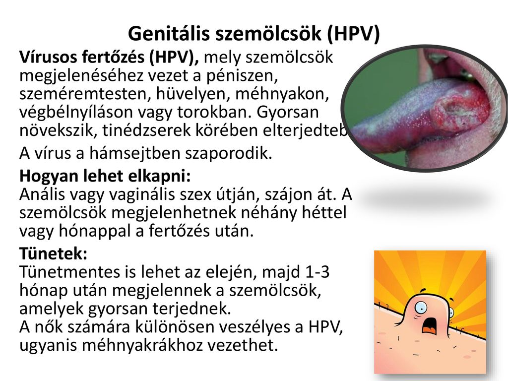 a genitális szemölcsök tünetei a méhnyakon)