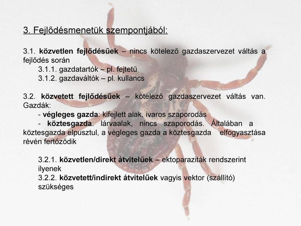 szimmetrikus fajok parazitái