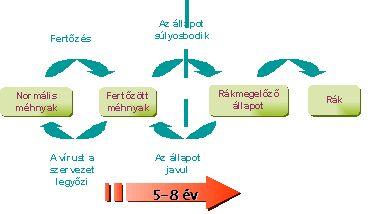 helmintox definíció