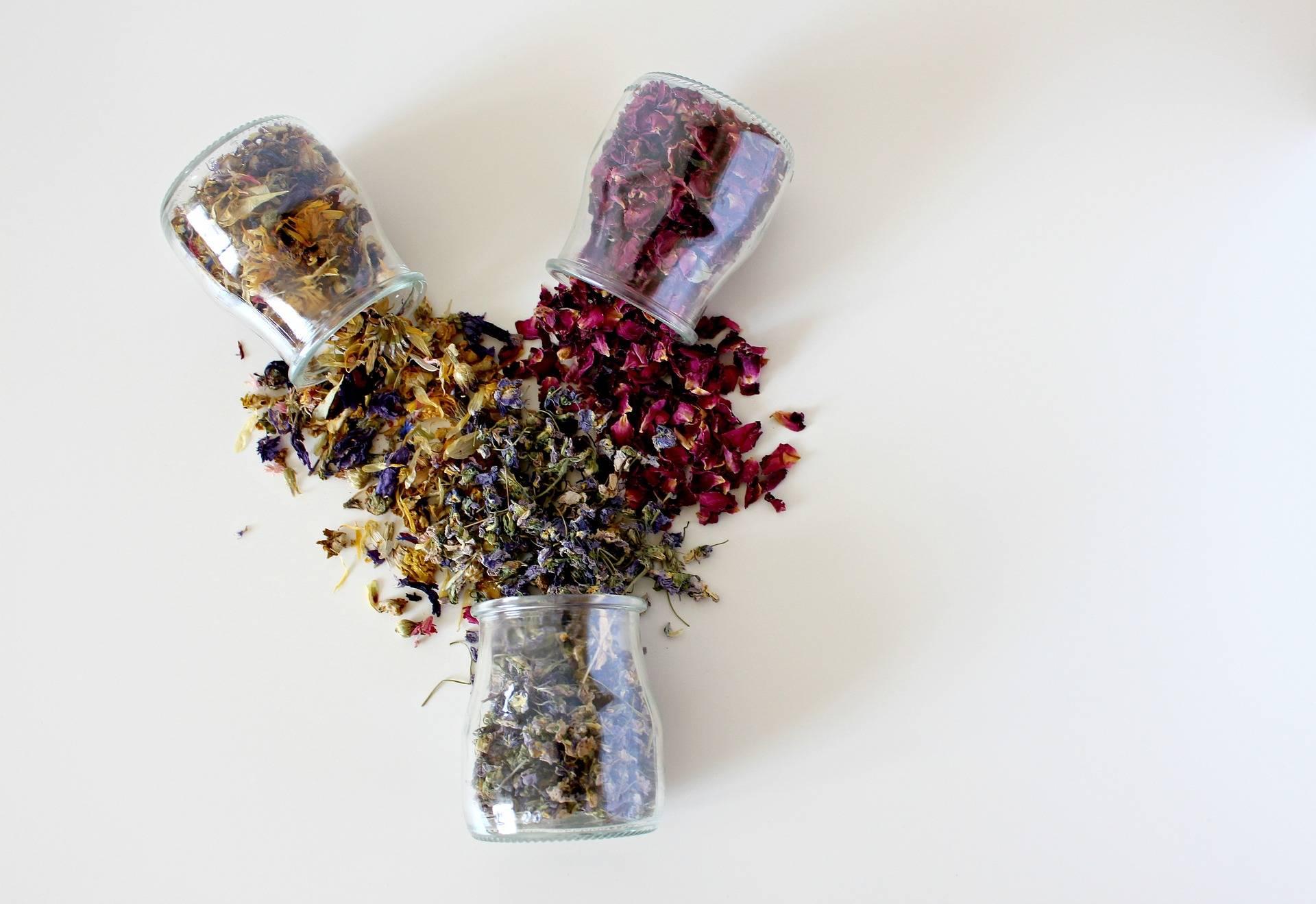 a mimosa pudica leveleinek féreghajtó hatása)