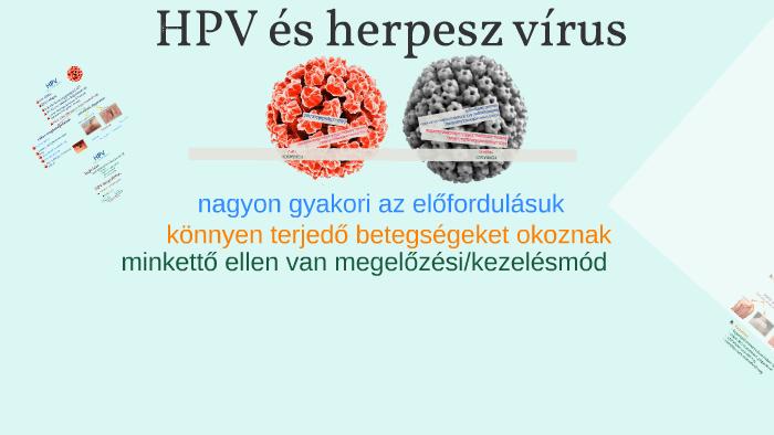 herpesz és papilloma)