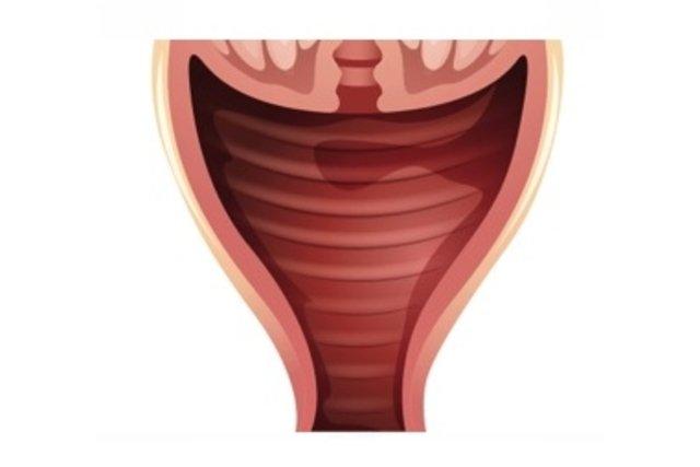 Mi a candidiasis genitális szemölcsök)