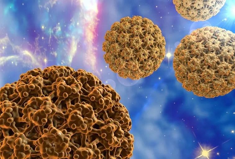 HPV humán papillomavírus humán papillomavírus shqip