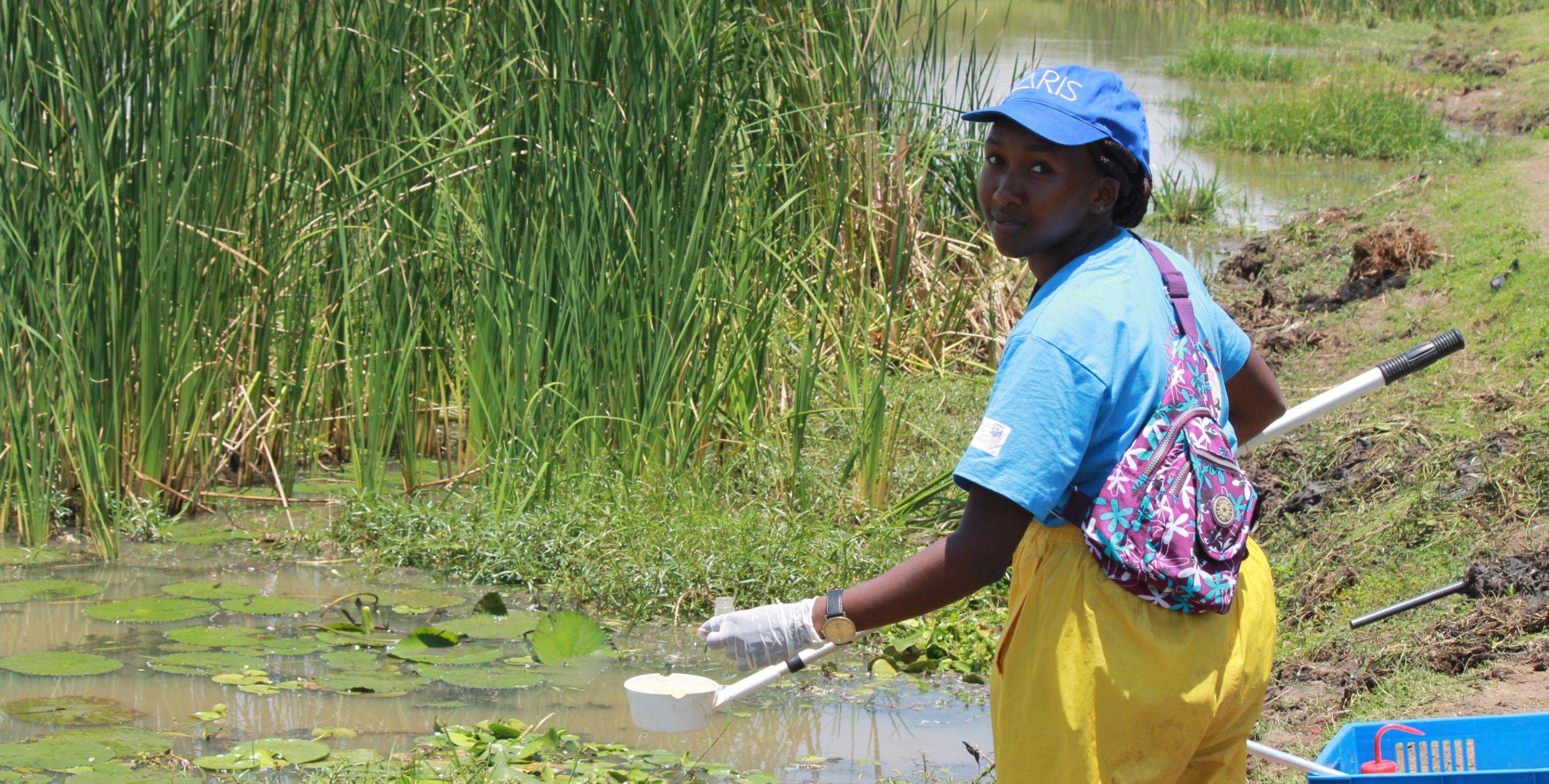 schistosomiasis kenia a parazitákat megölik