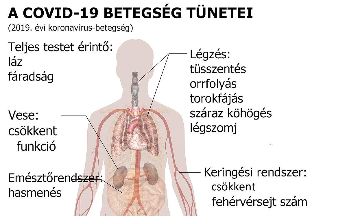 Fertőző betegségek listája