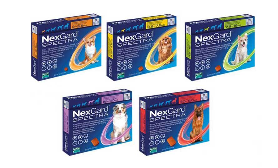Parazita tabletták neve A kutya leggyakoribb bélférgei