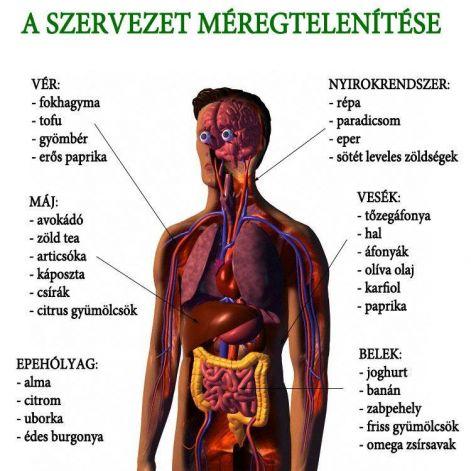 méregtelenítő klinikák Törökországban)