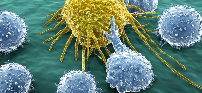 l vastagbélrák immunterápia)