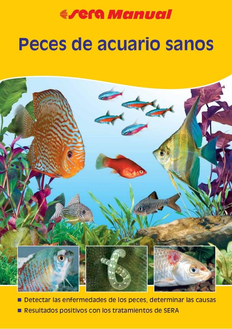 Fátyolbetegség (Costia) a halaknál Kopoltyú paraziták kezelése