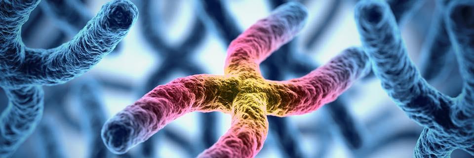 genetikai rák okai