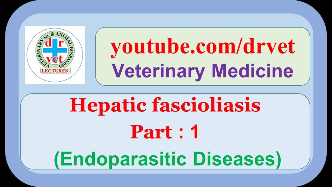a fascioliasis lokalizációja)
