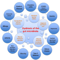 dysbiosis hogyan kell mondani