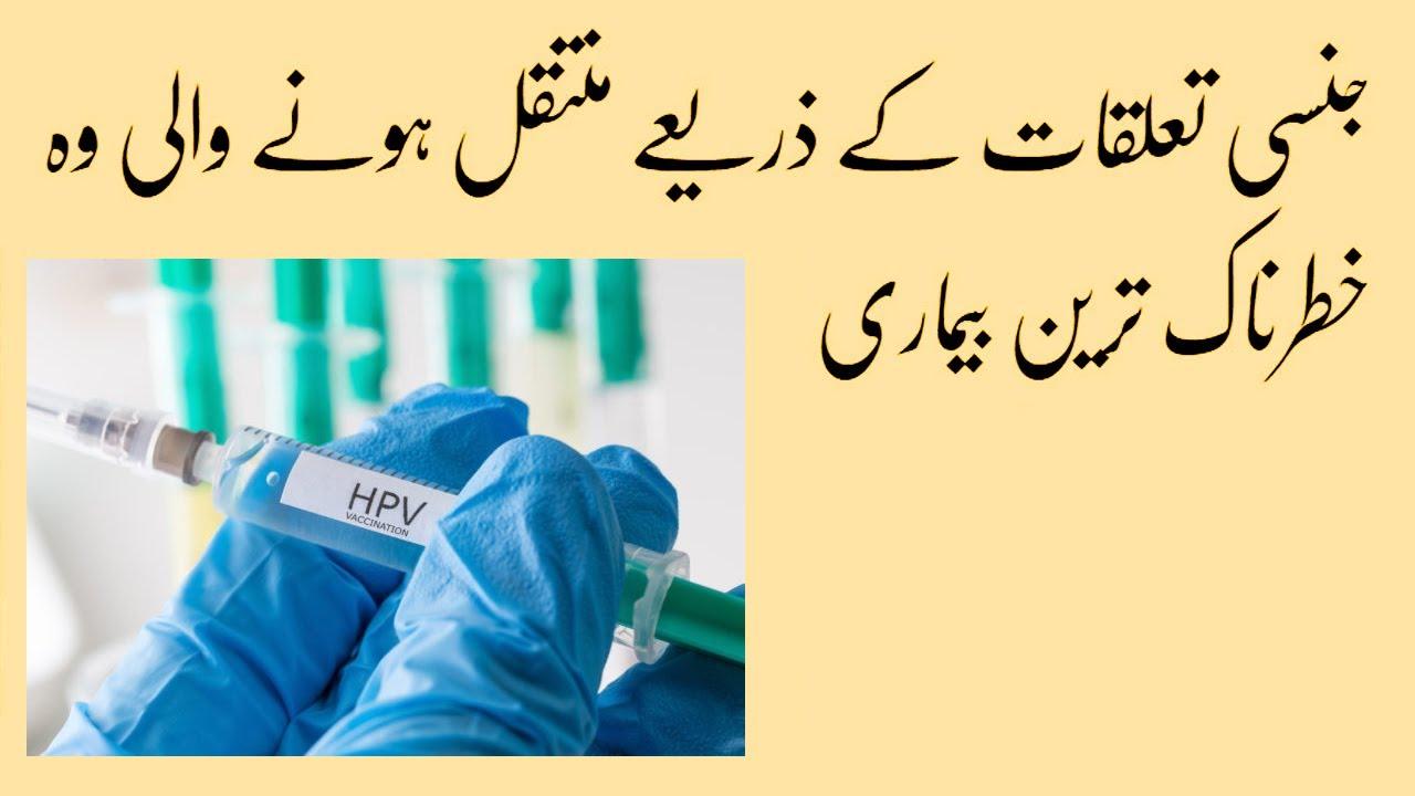a hpv jelentése urdu nyelven