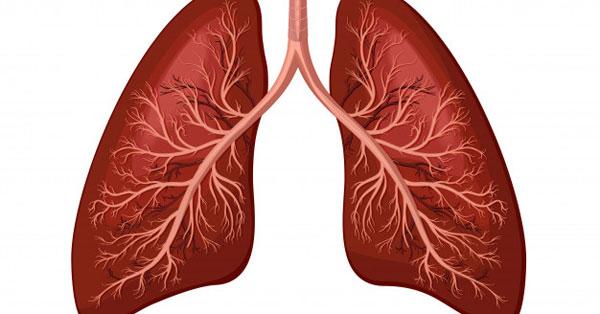 a tüdő tüneteinek parazita kezelése)