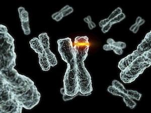 genetikai rák okai)
