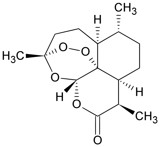 az artemisia annua parazitái