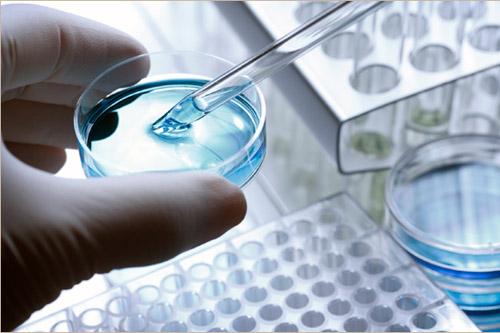 Egyre több az új daganatellenes gyógyszer
