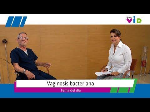 papillomavírus diamegosztása)