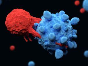 impakt faktor helmintológia 2020 ami emberi papillomavírus fertőzést jelent