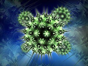 humán papillomavírus és petefészekrák)