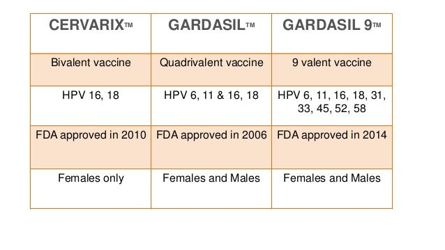 hpv vakcina ppt