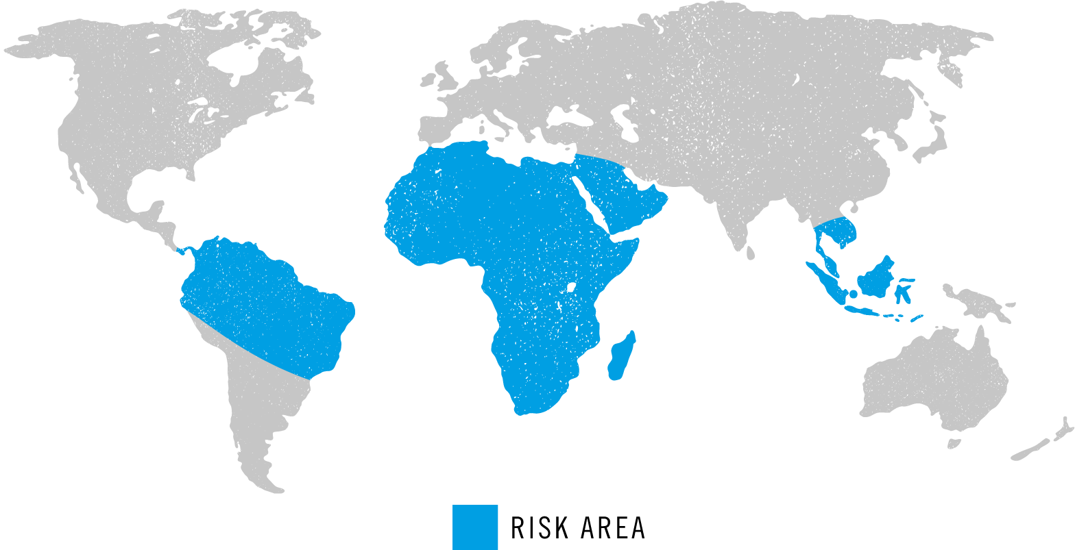 schistosomiasis uk hová menjünk a paraziták kezelésére