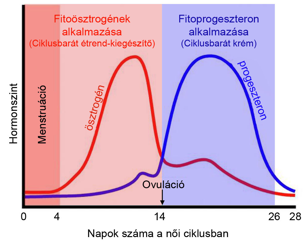méregtelenítő kiegészítők hormon étrendhez)