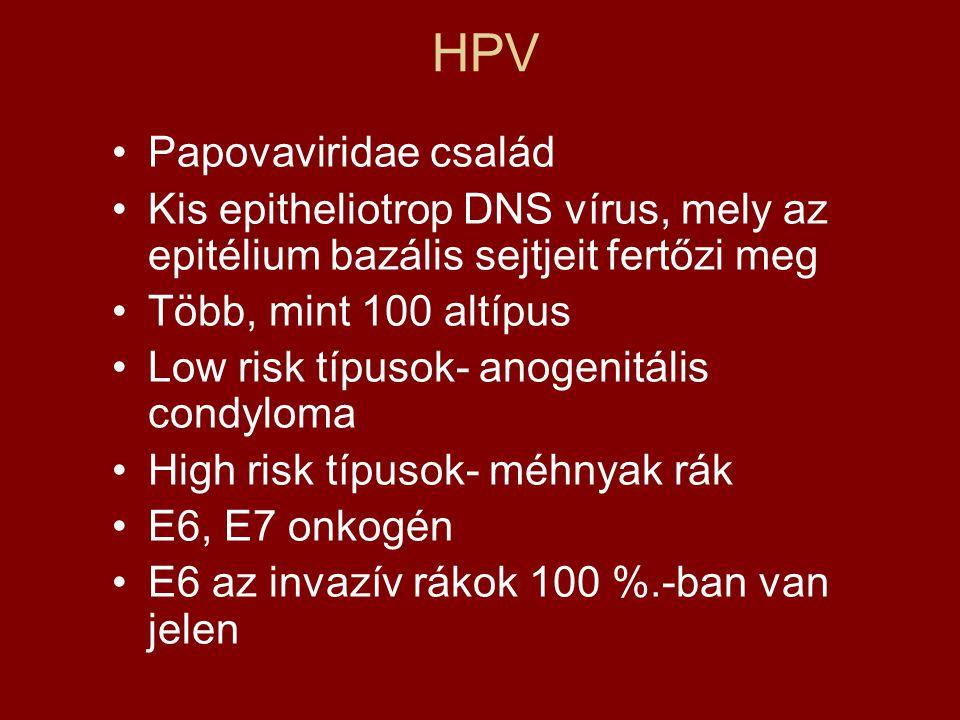 papilloma vírus és asszisztált megtermékenyítés)